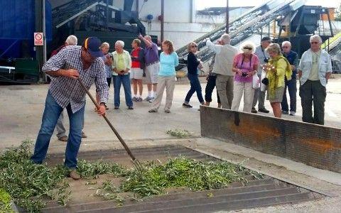 Oleícola San Francisco y su Oleoturismo en la prensa rusa.