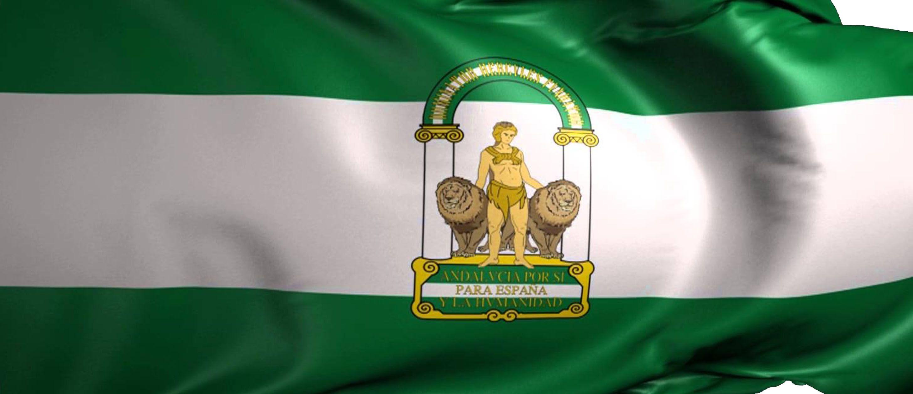 Resultado de imagen de bandera andalucia